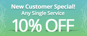 Special Offer One