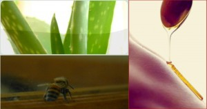 Honey Aloe Brazilian Wax